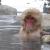 cold_water_zen